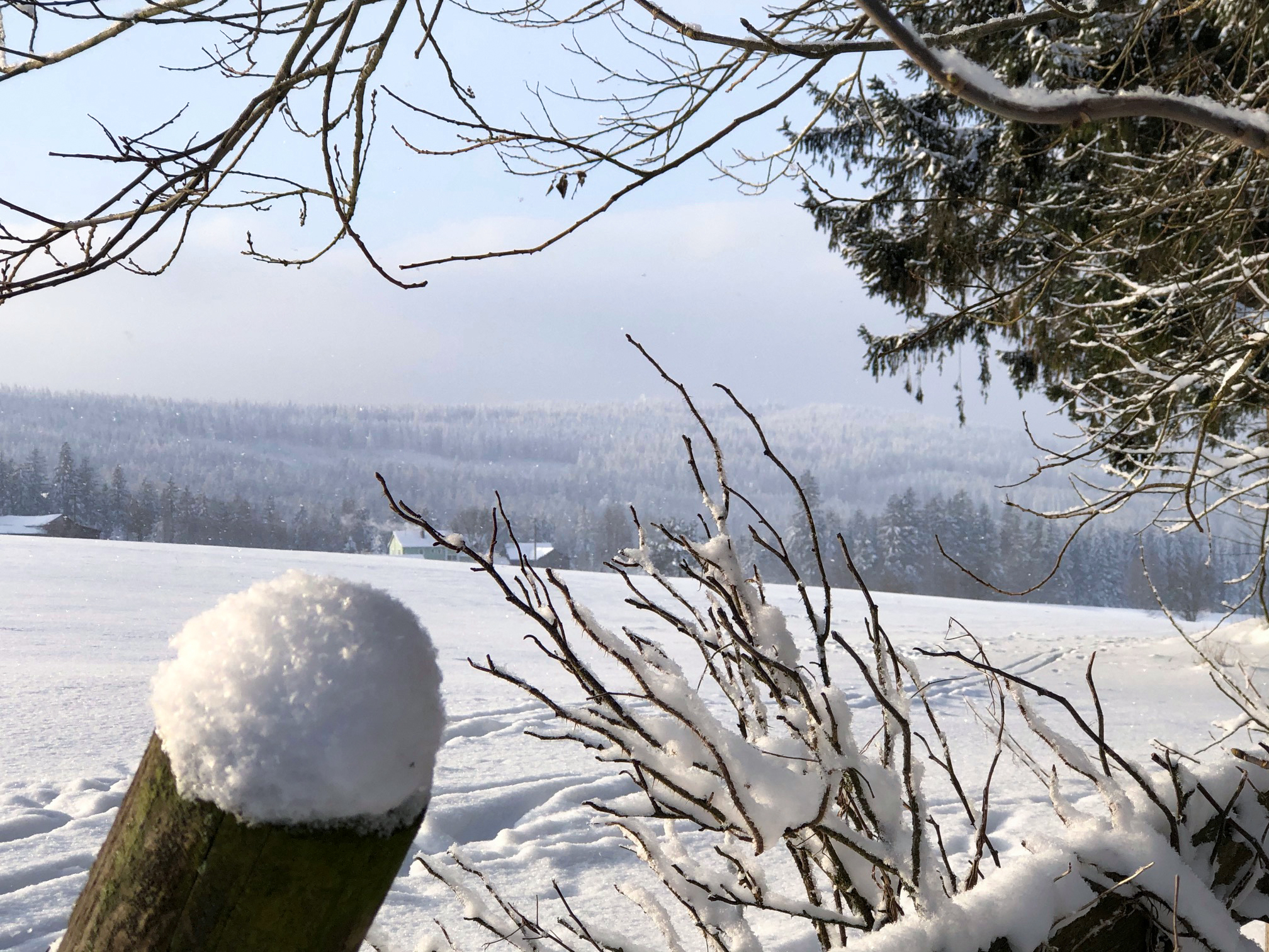 Winterlandschaft Hohenberg