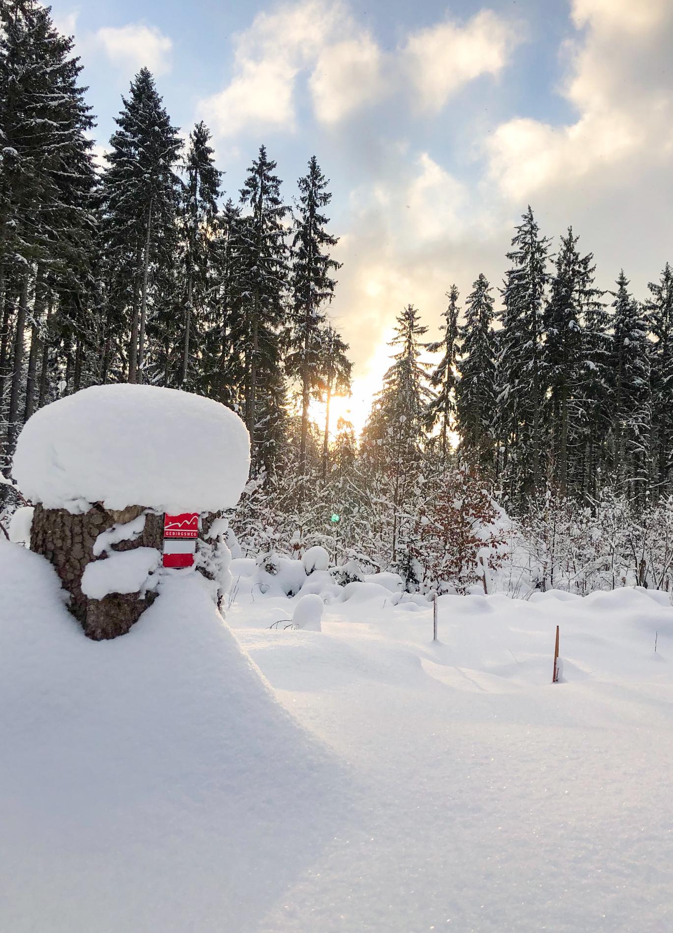 Winter im Fichtelgebirge